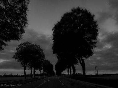 La route est entre deux chaos-2