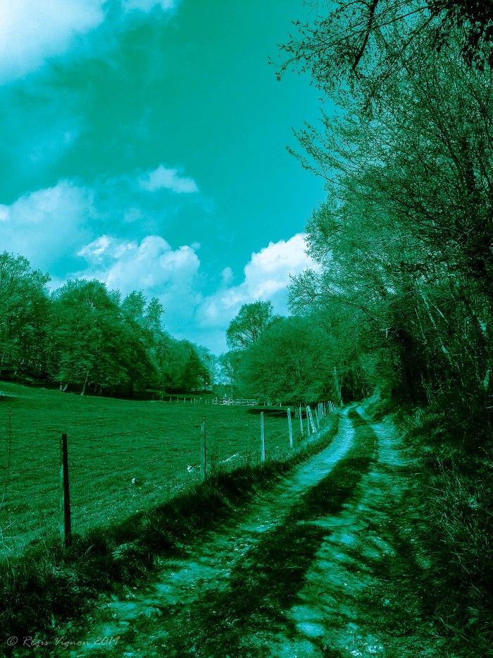 Haute Lumière bleue et Ombre verte (1 sur 1)-2